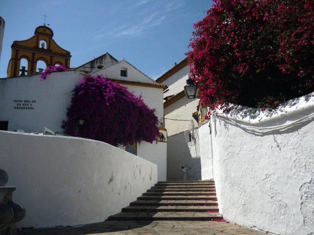2010-05 Andalousie (126)